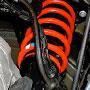 suspension: rear