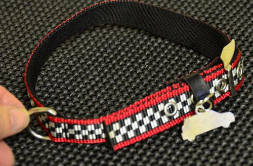 MINI Dog Collar