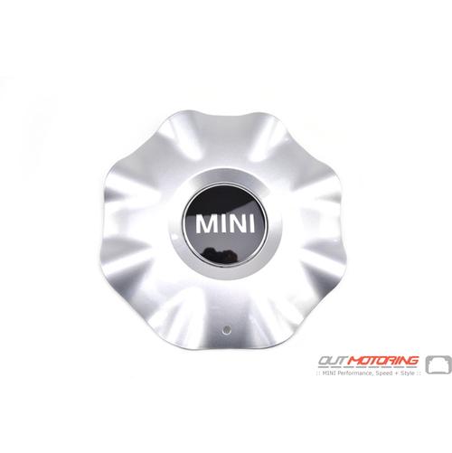 Hub Cap: Silver