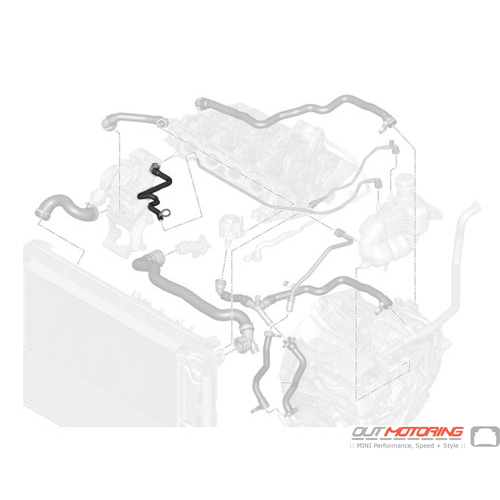 Hose: Cylinder Head-Expansion Tank